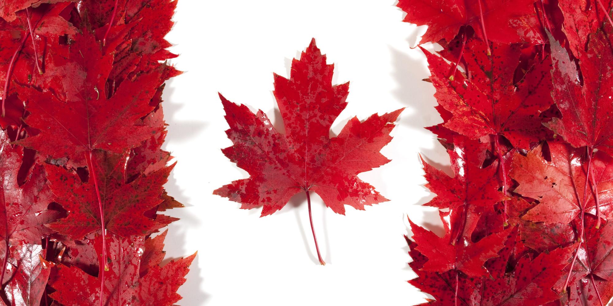 Canadian Flag - Leaf - Background - Hot Shots Curling Camp